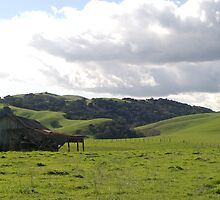 Barn in Gilroy by N2Digital