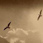 Freedom  by Louise Linossi Telfer