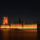 Houses of Parliament by Ray Clarke