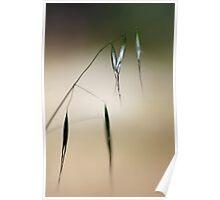 Grass Crystals Poster