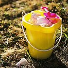 Sand Bucket And Pail by photolover08