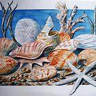 Shellscape by Betty Burnitt