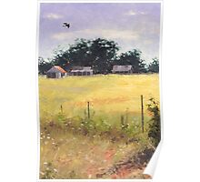 Soaring - near Invergowrie Homestead Poster