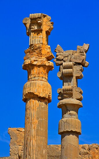 Capital Columns - Persepolis - Iran by Bryan Freeman