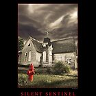Silent Sentinel, ©2010 Roland Taylor by Roland Taylor