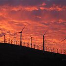 Malibu windfarm sunset-1 by McVirn Etienne