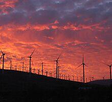 Malibu windfarm sunset-2 by McVirn Etienne
