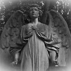 Angel of Highgate by liverecs
