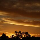 Australia sunset by fototaker