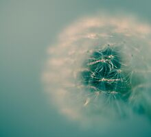 A Cloud for You by Johanne Brunet