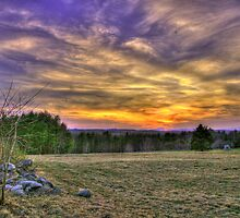 SUNSET FIELD by Edhammond