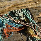 Driftwood and Sea Rope by Shonda Hogan
