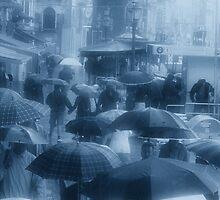Love in Venice Showers by Ann Garrett