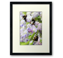 Irresistible Wisteria Framed Print