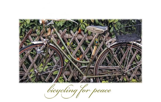 Bicycling for Peace by Dania Reichmuth