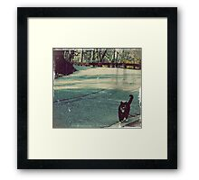 Cool cat in a small town... Framed Print