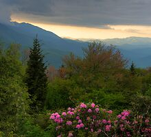 Mountain Evening by Jane Best