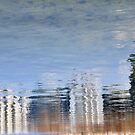 Reflection;...new work. by sendao