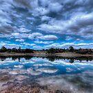 Sky Cotton by Bob Larson