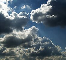 Cloud Cuckoo land by Chris Day