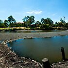 River Torrens Low Tide by Detour