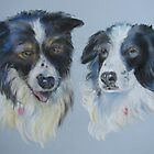 Border Collies- Max and Tucker  by bevmorgan
