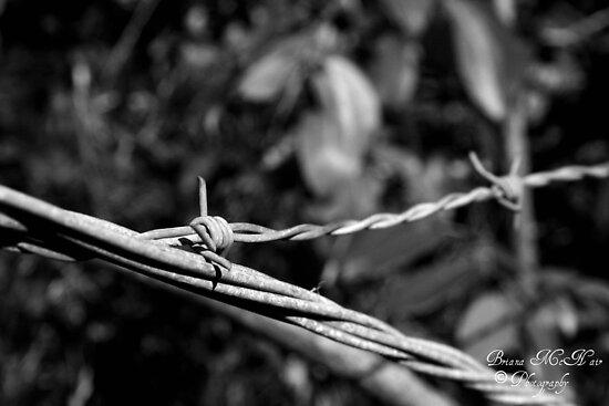 Wires Crossed by Briana McNair