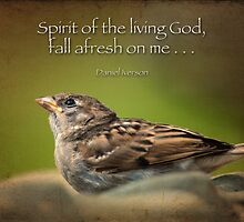 Spirit of the living God, fall afresh on me . . . by Bonnie T.  Barry