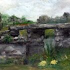 Postbridge Dartmoor Devon UK by Carol Rowland