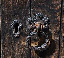 Knocking on wood by Shubd