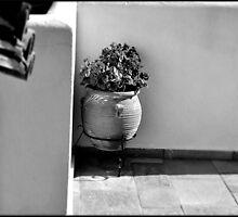SKIATHOS - A touch of mediterranean mood - B/W by Daniela Cifarelli