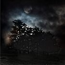 Slow Moon Rises by Mary Ann Reilly