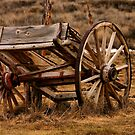 Old Wagon Cart by Xcarguy