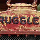 Ruggles No 2 by Kat36
