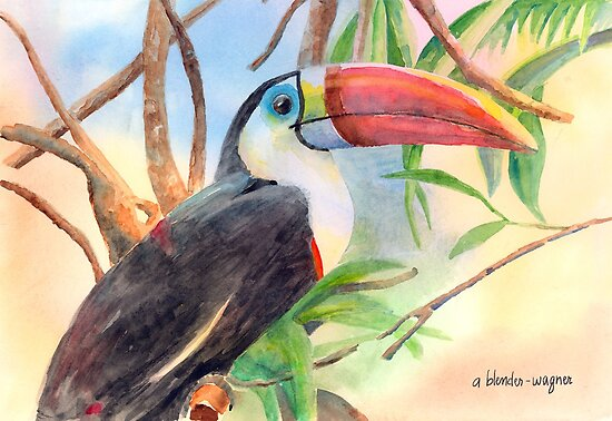 Red-billed Toucan by arline wagner