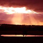 Golden Merlot Skies over Lovedale by Jen Waltmon