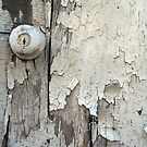 Old Door by Peter Baglia