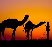 Into the Desert by HeatherEllis