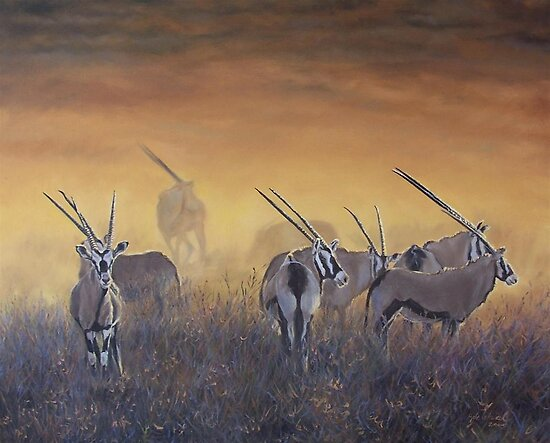 Gemsbok at dawn, Southern Africa by Santamaria