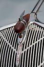 1936 Hudson Terraplane symbol & grill by buttonpresser
