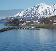 Oksfjord  -  Norway 14 may 2010 by Wimburian