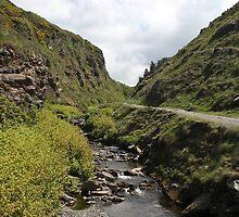 Glen Maye, Isle Of Man by Nick Barker