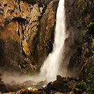 Lower Yosemite Falls by Barbara  Brown