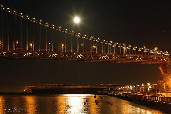 Bay Bridge Stars by Leasha Hooker