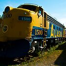 Alaska Railroad Locomotive 1500 by Sally Winter