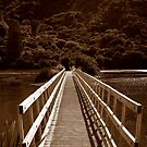 Abel Tasman walkway by lukasdf
