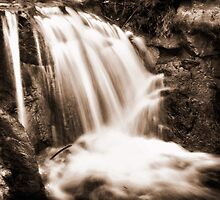 Waterfall in Sepia by Malia