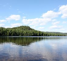 Summer Reflections by Alyce Taylor