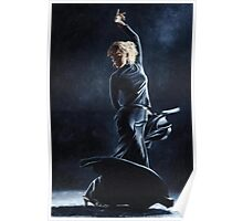 Flamenco Dexterity Poster