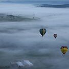 Ballooning over the Hunter Valley by SuzieLock